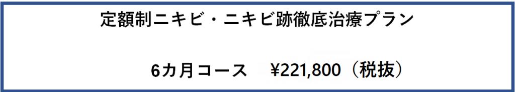 定額制ニキビ・ニキビ跡治療プラン 6カ月コース ¥221,800(税抜)