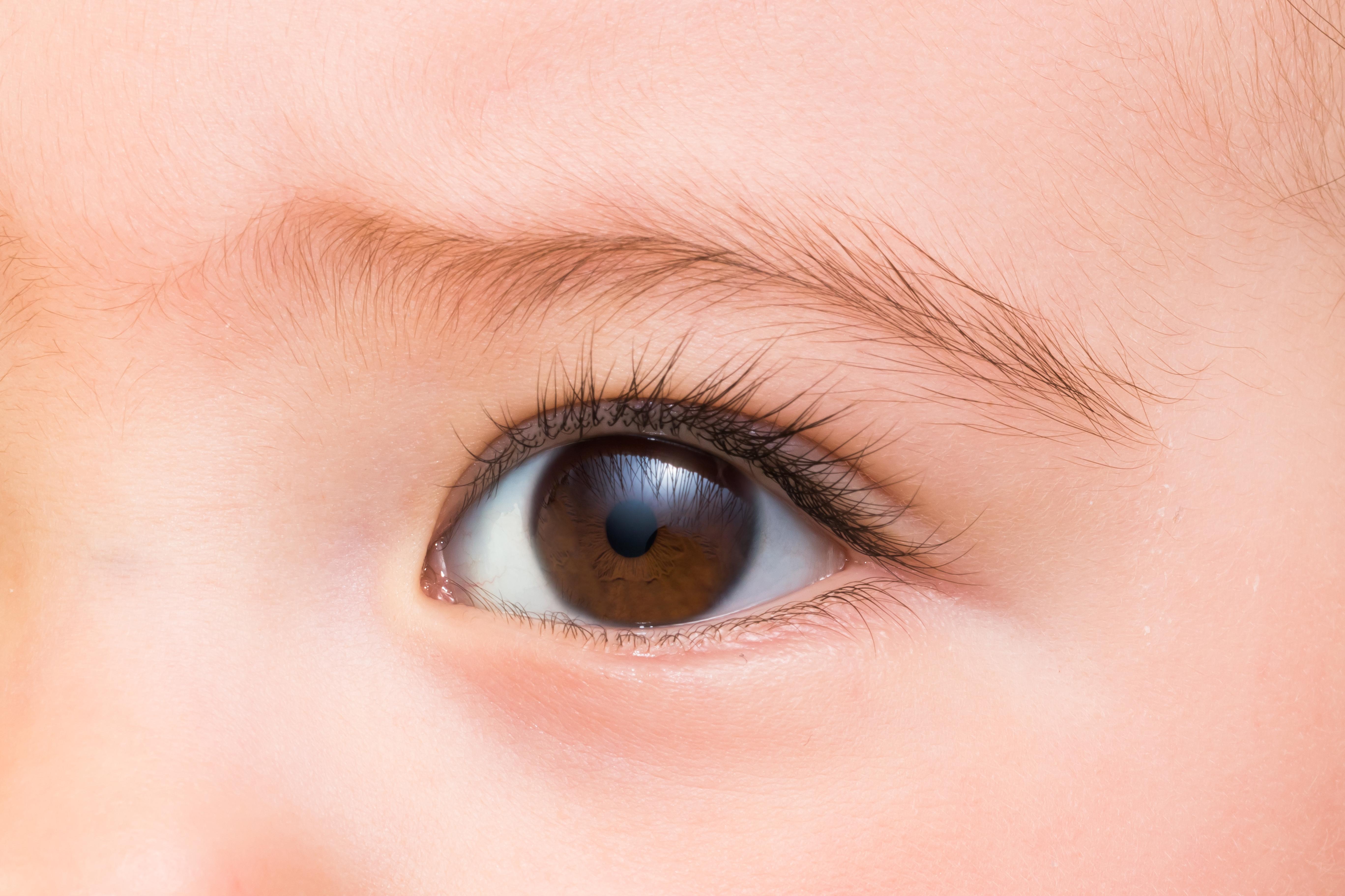 取り ない 意味 脂肪 瞼 上まぶたの脂肪溶解注射ですっきりした瞳に:高須クリニック