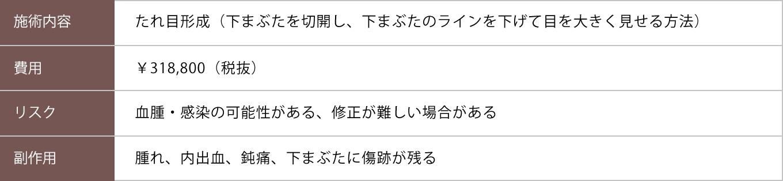 たれ目形成【症例No.769】